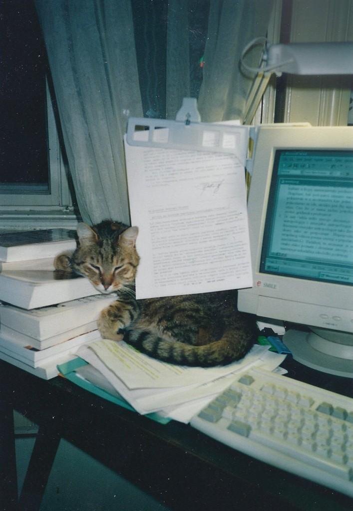 kreten sa kompjuterom-sredjeno